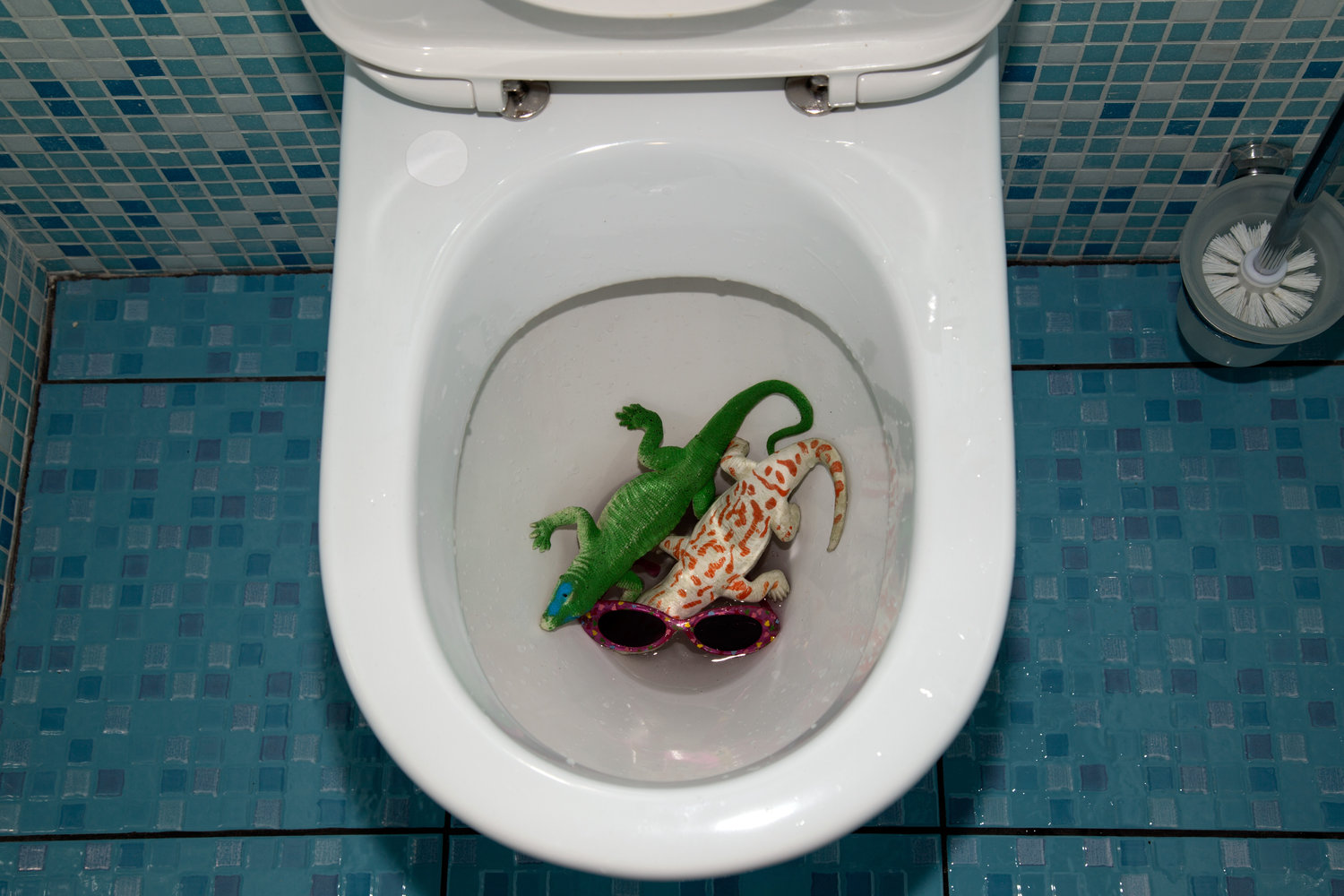 dropped in the toilet