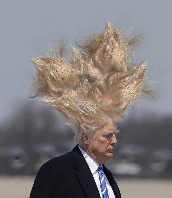Trump-Hair-Hair-Hair