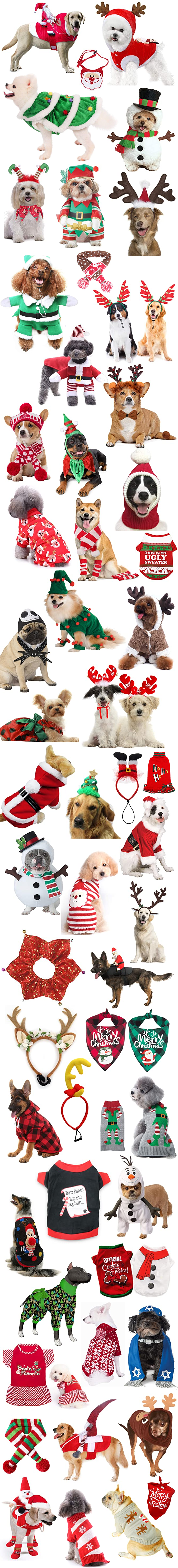 THE CUTEST FUNNIEST BEST CHRISTMAS DOG COSTUMES 2020