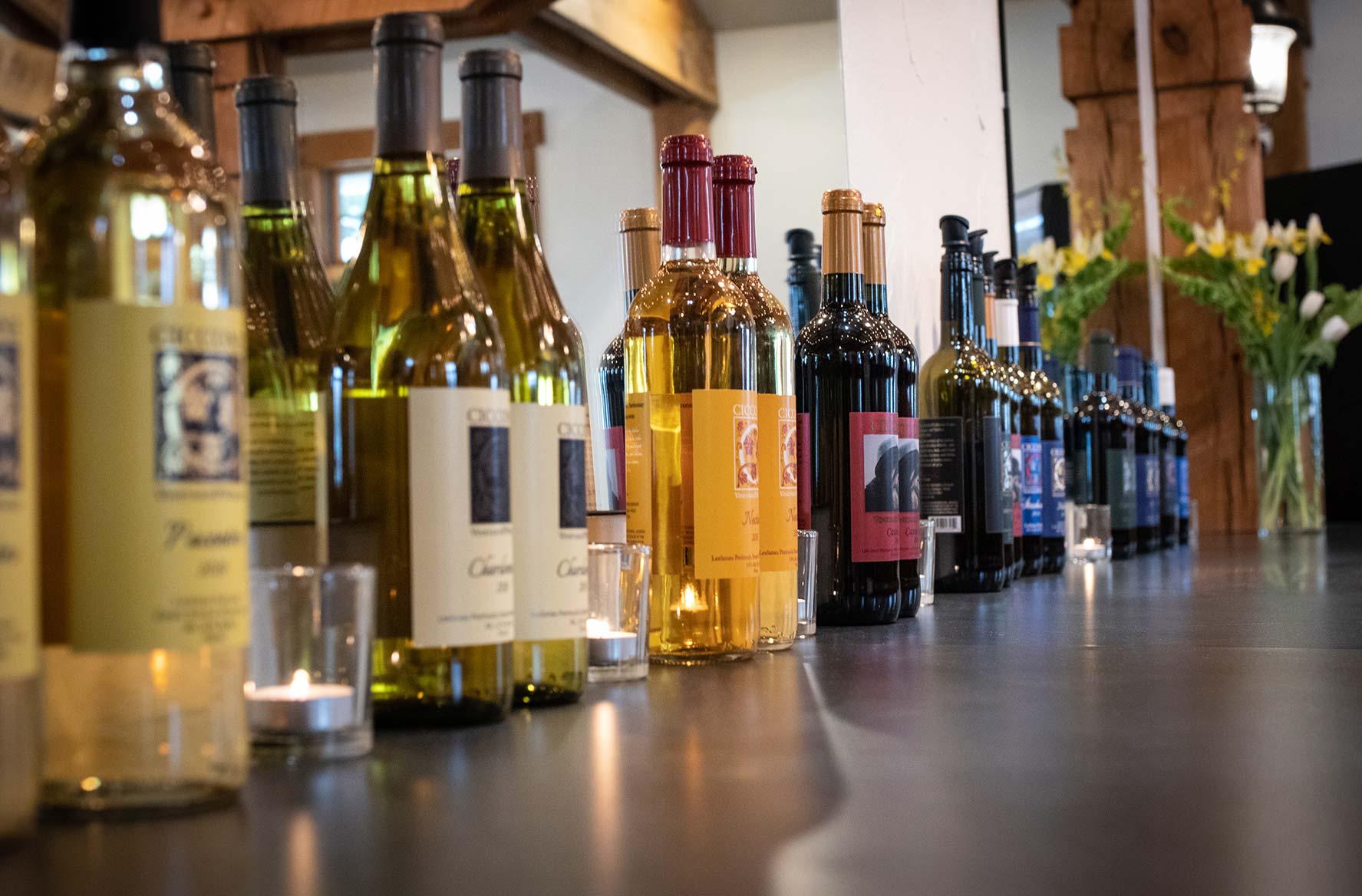 Ciccone-Vineyard-Wines