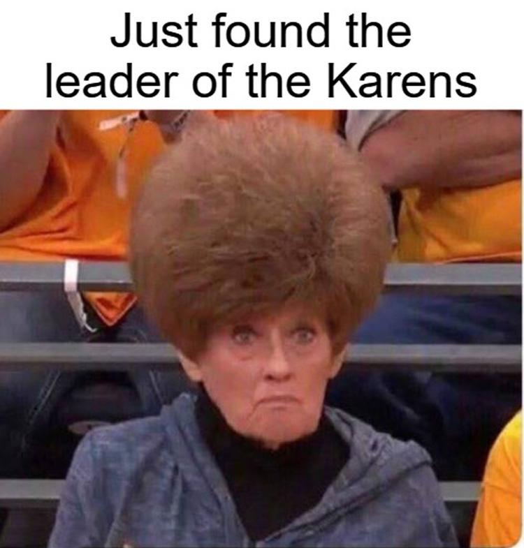 The Best Karen Memes On The Net